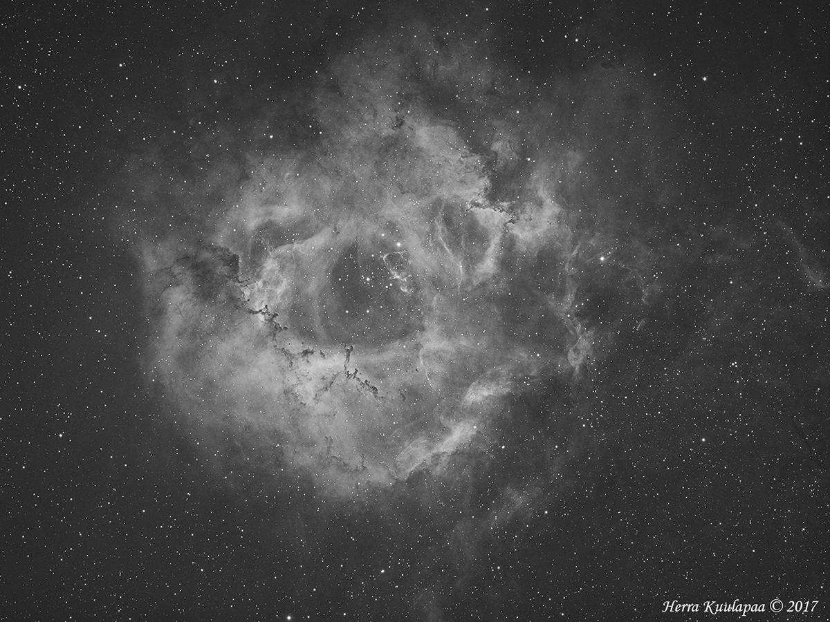 QHY163M_Rosette_1200.jpg